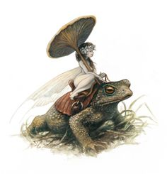 Faery riding toad