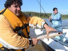 Una Tierra Diferente - Sitio Oficial de Turismo de Entre Rios - Ganadores del Certamen de Pesca de Embarcados con Devolución de Diamante