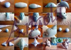 dolphin step by step