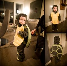 Homemade Turtle Costume   Flickr - Photo Sharing!