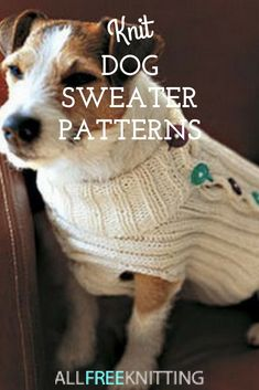 Knit for your pup! T Knit for your pup! These dog sweater patterns are easy and adorable. Knitted Dog Sweater Pattern, Knit Dog Sweater, Dog Pattern, Sweater Patterns, Knitting Patterns For Dogs, Knitting Projects, Baby Knitting, Kids Patterns, Free Knitting