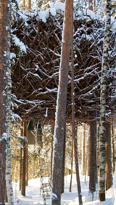 It is full winter at the Treehotel in Swedish Lapland. www.lulea-swedishlapland.com