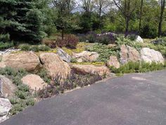 Living Rock Retaining Wall......rock/flower garden to break up all of the lawn area in the front.