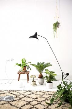 12 Plant-Filled Interiors to Inspire