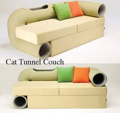 cat tunnel couch.....Lizzy and Billie would love this!!
