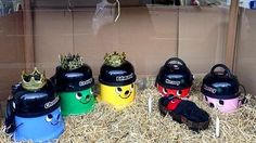 henry hoover nativity - Bing Images