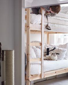 Las literas permiten tener un espacio privado a los niños que comparten dormitorio