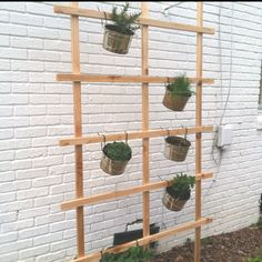 Vertical herb garden.  Galvanized pails, cedar lattice, and zip ties (don't forget to drill a drainage hole in pails!).   *J Pinspired*