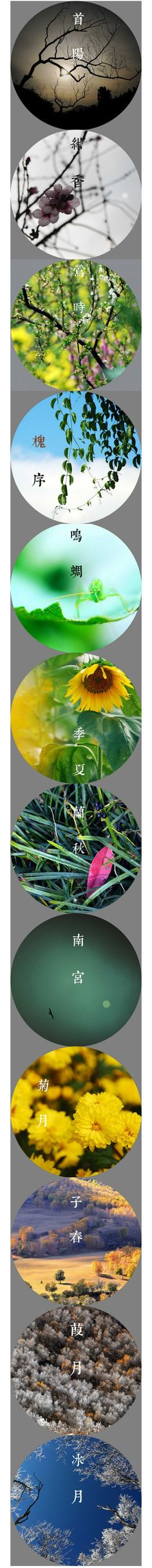 Chinese lunar calendar each month nickname: January-Shouyang, February-cyanosis incense, March-warbler, April-Huai sequence, May-Wong cicada, June-Jixia, July-Lan Qiu, August-Southern Palace, September-chrysanthemum month , Oct.-sub spring, Nov.-Jia month, December-Icy Moon.