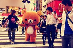 Rilakkuma crossing the street♥ on We Heart It - http://weheartit.com/entry/52136659/via/litwinenko