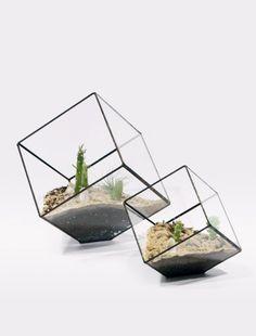 Handmade glass terrariums by Matthew Cleland ofScore+Solder.