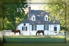 This pasture is home to some of the horses who earn their keep in Colonial Williamsburg . They get as much attention grazing as they do esc. Colonial Williamsburg Va, Williamsburg Virginia, Virginia Is For Lovers, Colonial America, Colonial Architecture, Virginia Beach, Historic Homes, Old Houses, Horses