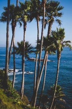 Southern California - Laguna Beach