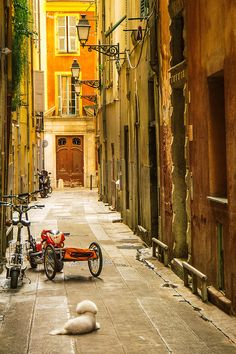 Beautiful streets of Nice, France