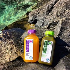 """""""Spent the day at the makapu'u tide pools and stayed hydrated with these delicious elixirs from @tumericalive  Each elixir is packed with 16g of organic Hawaiian turmeric. Turmeric is nutrient powerhouse. If you are looking to supplement your diet with one thing, turmeric is it. """" - Liz Arch"""
