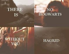 We love you Hagrid!