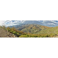 Elevated view of trees in a valley from Tornavacas Valle Del Jerte Caceres Caceres Province Extremadura Spain Canvas Art - Panoramic Images (5 x 15)
