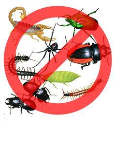 Garanti Böcek İlaçlama