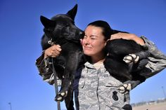 Military Working Dog Kiara licks her handler Staff Sgt. Rosanne Caballero, 799th Security Forces Squadron MWD trainer, after searching vehicles for contraband July 23, 2014, at Creech Air Force Base, Nev. Handlers play with their dogs throughout the day to praise them for a job well done as well as to build a bond between each other. (U.S. Air Force photo by Airman 1st Class Christian Clausen/Released)