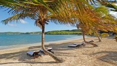 Nonsuch Bay Resort: It's a short walk down to the resort's private beach and quiet bay that's ideal for sailing.