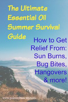 Ultimate Essential Oil Summer Survival Gude Get Relief from Sun Burns, Bug Bites, Hangovers & More! www.paintedteacup.com