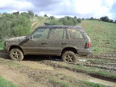 #RangeRover P38  colour : mud