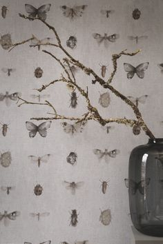 Behang / Wallpaper collection Chacran - BN Wallcoverings