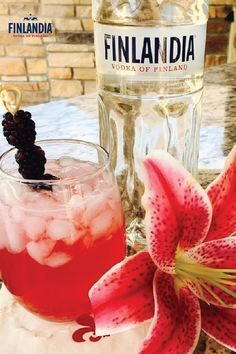 The Original Oaks Lily is a flavorful cocktail to enjoy this spring at your Kentucky Derby party. Combine 1oz Finlandia Vodka with 1oz lemonade, 3oz cranberry juice, a splash of triple sec and a squeeze of lime. Shake and strain into a tall glass and garnish with 3 blackberries.