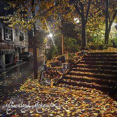 Art Journal Time - Autumn Inspiration | Miraculous Mosquito Leaf Shapes, Art Journal Pages, Autumn Inspiration, Digital Collage, Miraculous, Autumn Leaves, Korea, My Arts, Artwork