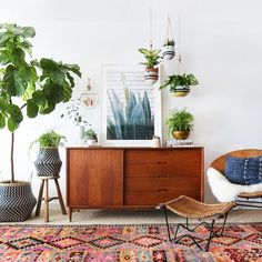 boho eclectic living room with mid century decor and plants.