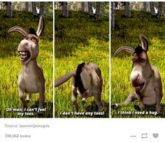 Hahahha donkey! He gets it