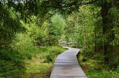 Sprookjesachtig najaar in de Hoge Vogezen - Passie voor Frankrijk Lorraine, Bergen, Camper, Places To Go, Sidewalk, Country Roads, Europe, City, Pathways