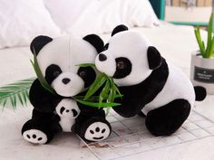 Only $6.90 Fluffy Animals, Baby Animals, Cute Animals, Fondant Flower Tutorial, Amazing Animal Pictures, Cat Kennel, In Natura, Panda Love, Cute Cards