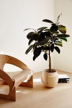 Mid century Meets Modern ♡ the Plant! Photo by Nicole Franzen