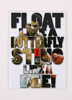 Float Sting Magnet