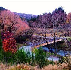 Swain Bridge, Arrowtown, Otago, Southland, New Zealand