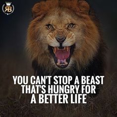 When you are hungry for change, you are willing to work harder than the rest. Be proud of your accomplishments, but never be satisfied. Stay hungry and stay on top! • Follow @Risebeyond.fam  Follow @Risebeyond.fam  • Like 5 Pictures Turn on post notifications so you don't miss our next post! Share with your friends