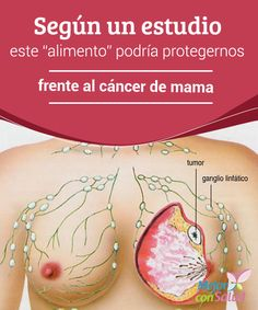 """Según un estudio este """"alimento"""" podría protegernos frente al cáncer de mama En…"""