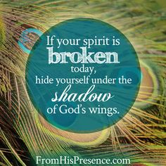 Such an encouraging blog post if you have a broken spirit! Read!