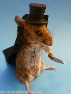 MR Mouse JACK THE NIPPER TAXIDERMY