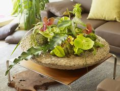 Basket with tropical delight. Looks like paradise on the table.