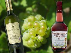 Tsantali - Macedonian Wines Macedonian wineries of Greece