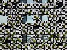 Completed in 2011 in Japan. Images by Kengo Kuma & Associates. Kengo Kuma & Associates have created this visually stunning mixed-use building in Odawara, Japan, featuring a living façade made of aluminum. Kengo Kuma, Building Facade, Green Building, Building Skin, Building Design, Facade Design, Exterior Design, Rue Verte, Kanagawa Prefecture