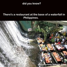 I want to eat at the foot of a waterfall!