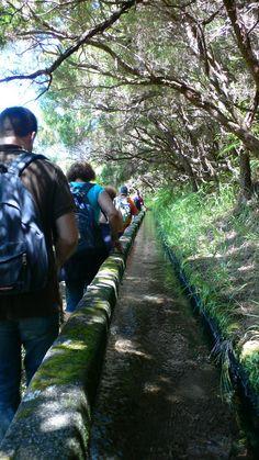 Levada walkings in Madeira Island, Portugal