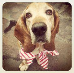 My best friend!!