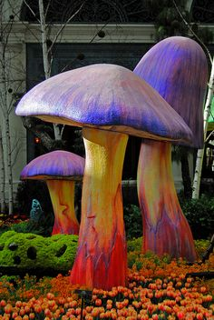Giant toadstools #candigardenparty