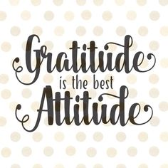 best gratitude quotes thanksgiving quotes thankful memes to share social media feeling thankful Love Quotes For Her, Thank You Quotes, Great Quotes, Quotes To Live By, Life Quotes, Qoutes, Crush Quotes, Wisdom Quotes, Relationship Quotes