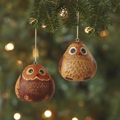 Serrv Hand-Etched Natural Owl Gourd Ornament Set of 2 Best-Seller Decorative Gourds, Hand Painted Gourds, Outdoor Christmas Decorations, Christmas Centerpieces, Christmas Tree Ornaments, Christmas Crafts, Christmas Owls, White Christmas, Handmade Christmas