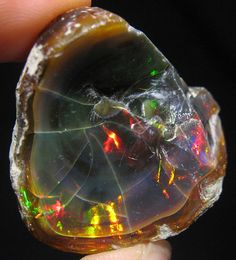 Black Opal In 1901 opal mining begins at Lightning Ridge. Lightning Ridge is the home of Black Opal, the most precious variety of all opals.